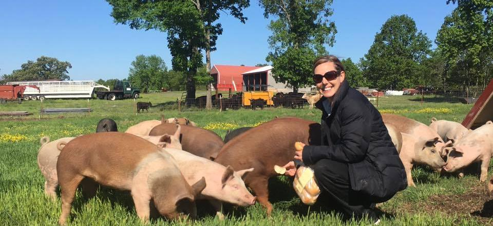The pigs love when Angela shows up with treats!