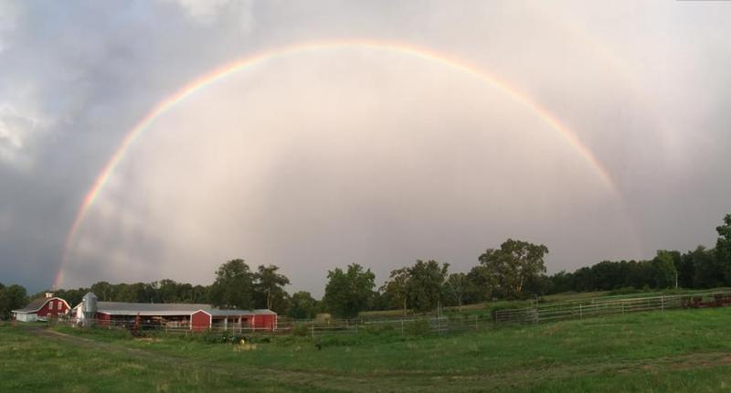 rainbow_over_farm-123724.800.430.jpg